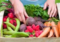 Як знизити рівень холестерину за допомогою харчування?