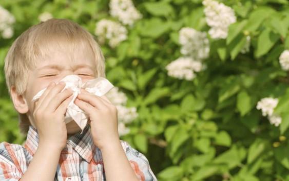 Як зробити дитину алергіком?